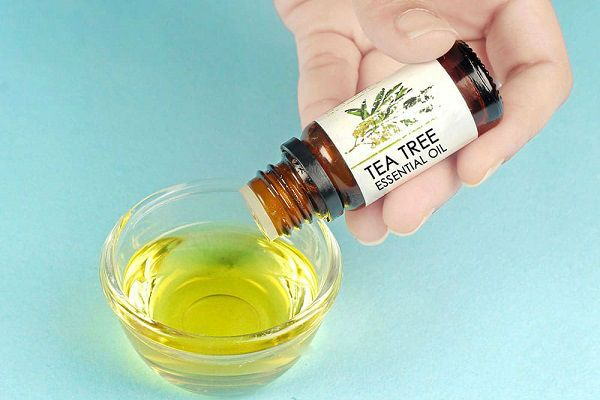 Как лечить грибок ногтей маслом чайного дерева